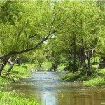 Río Cruz del Eje