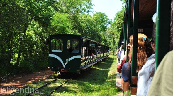 Tren Ecologico de la Selva