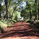 Parque Municipal Adolfo Schwelm