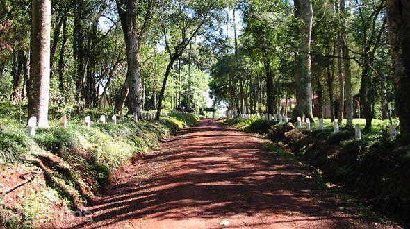 Parque Municipal Adolfo Schwelm Eldorado
