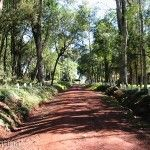 Parque Schwelm Camino