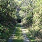 Acceso Tunel La Merced