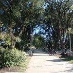 Plaza de Sa José de Metan