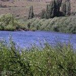 Codo Río Alumine