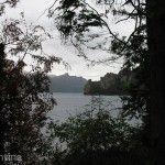 Vista desde Bosque