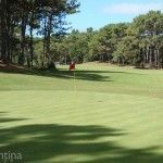 Green Carilo Golf