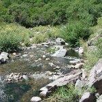 Arroyo en Capilla del Monte