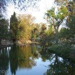Atardecer Parque Sarmiento