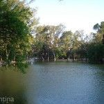 Paisaje Parque Sarmiento
