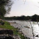 Río Cosquin y Vegetación