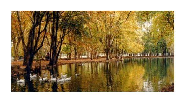 Parques de Río Cuarto