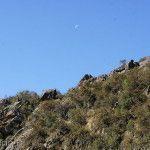 Luna en el Parque Nacional Quebrada del Condorito