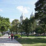 Plaza 25 de Mayo y Catedral