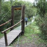 Puente colgante Parque Nacional Chaco