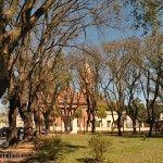 Iglesia y Arboleda