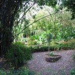 Jardin de los Pajaros