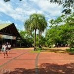 Acceso Parque Nacional Iguazu