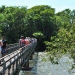 Camino Garganta del Diablo Parque Nacional Iguazu