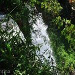 Detras Catarata Parque Nacional Iguazu