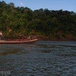 Gomon en Parque Nacional Iguazu