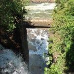 Puente Parque Nacional Iguazu