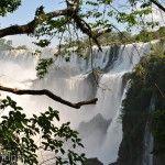 Tarde en Parque Nacional Iguazu