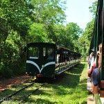 Tren Parque Nacional Iguazu