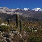 Las Pailas, sitio arqueológico de Cachi