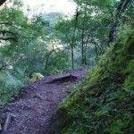 Reserva Natural Quebrada de San Lorenzo