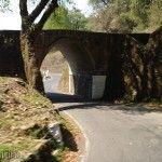 Puente / Tunel