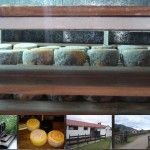 Estancia Las Carreras, quesos de Tafí