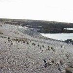 Cabo 2 Bahias Pingüinos