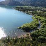 Vegetación y Lago Puelo