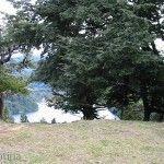 Vistas de Parque Los Alerces