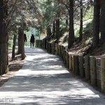 Caminando en Vía Christi