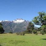 Paisaje Parque Nacional Lanin