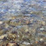 Piedras Río Chimehuin