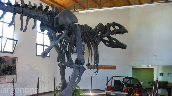 Museo Paleontologico Ernesto Bachman
