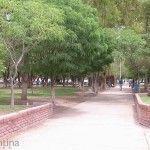 Camino Plaza San Martín