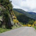 Rutas de San Martín de los Andes