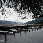 Muelle y Botes